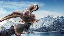 Eränkävijät: Alpeilta Arktiselle