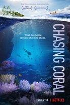 Chasing Coral: katoavaa korallia kuvaamassa