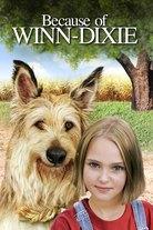 Ystäväni Winn-Dixie