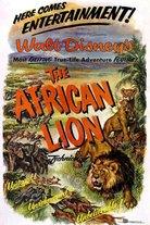 Villi Afrikka