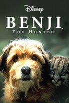 Benji seikkailee
