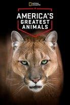 America's Greatest Animals