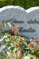 Emilie - kesken jäänyt murhatutkimus